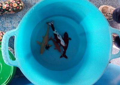 water-party-fiestas-tematicas-virmon15