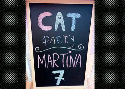 cat-party-fiestas-tematicas-virmon5